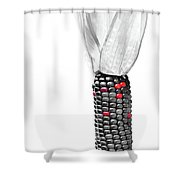 Heirloom Corn Shower Curtain