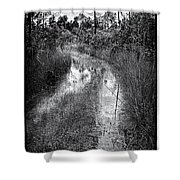 Hiking Trail  Shower Curtain by Rudy Umans