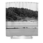Hilton Head Island Shoreline In Black And White Shower Curtain