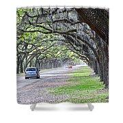 Historic Wormsloe Plantation Shower Curtain