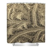 Extraordinary Hoarfrost Scallop Patterns In Sepia Shower Curtain