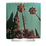 Hollywood And Vine Shower Curtain