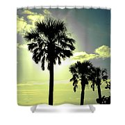 Honeymoon Island Sunset Shower Curtain