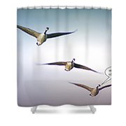 Honk If You Love Flying Shower Curtain