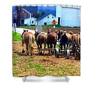 Horse Team Shower Curtain