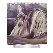 Horse World Detail Shower Curtain