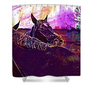 Horses Harmony For Two Animal World  Shower Curtain
