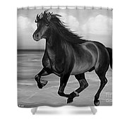 Horses In Paradise  Run Shower Curtain