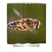 Hoverfly In Flight Shower Curtain