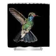Hovering Hummer Shower Curtain