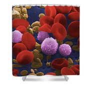 Human Blood Cells Shower Curtain by NIH / Science Source