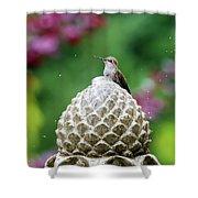Hummingbird On Garden Water Fountain Shower Curtain