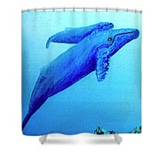 Humpback Mother Whale And Calf #21 Shower Curtain