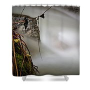 Hung Up Shower Curtain