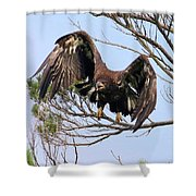 Hurrying Back To The Nest Shower Curtain