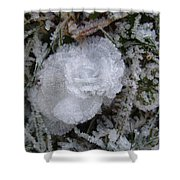 Ice Rose Shower Curtain