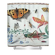 Insects And Garden Pansy Shower Curtain