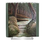 Into The Woods II Shower Curtain