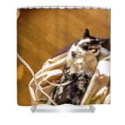 Intravenous Drip Cat Shower Curtain