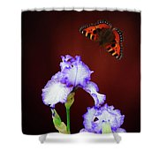 Iris And Butterfly Shower Curtain