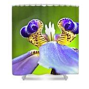 Iris Flower Shower Curtain by Heiko Koehrer-Wagner