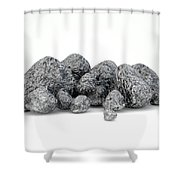 Iron Ore Nugget Collection Shower Curtain