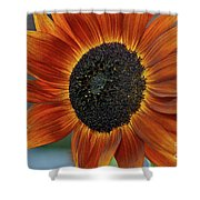 Isabella Sun Shower Curtain