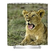 It's Been A Long Day Shower Curtain