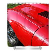 Jaguar E-type Shower Curtain