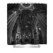 Jerez De La Frontera Cathedral Dome From Inside Cadiz Spain Shower Curtain