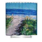 Jersey Shore Dunes Shower Curtain