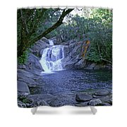 Josephine Falls And Tropical Pool Shower Curtain