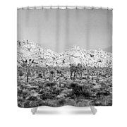 Joshua Tree Panoramic Shower Curtain