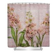 Just Peachy Shower Curtain