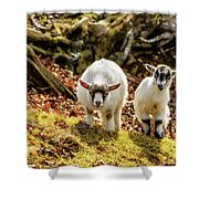 Kids At Play Shower Curtain