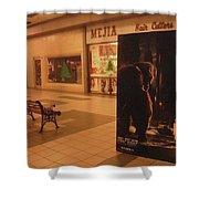 King Kong Remake Poster Mall Casa Grande Arizona Christmas 2005 Shower Curtain
