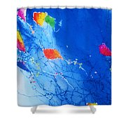 Kite Sky Shower Curtain