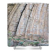 Konojedy Rock Loaves Shower Curtain