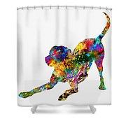 Labrador Retriever-colorful Shower Curtain