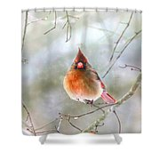 Lady Alone Shower Curtain