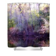 Lake Waterford Shower Curtain