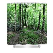 Lakeside Trail Winding Path - Yellowwood Lake Shower Curtain