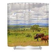 Landscape In Malawi Shower Curtain