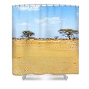 Landscape Near Laisamis, Kenya Shower Curtain