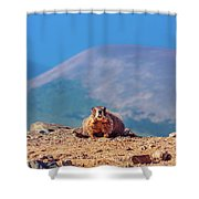 Landscape With Marmot Shower Curtain