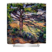 Large Pine And Red Earth Shower Curtain