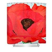 Large Poppy Shower Curtain