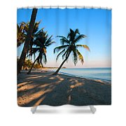 Last Sunbeams Shower Curtain