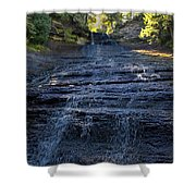 Laughing Fish Falls Shower Curtain