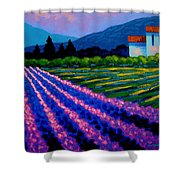 Lavender Field France Shower Curtain